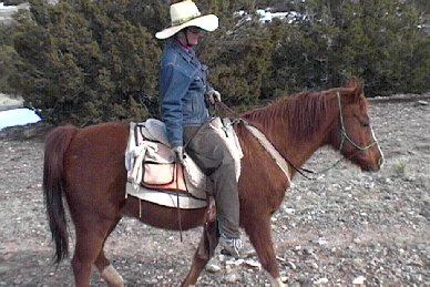Our passion is horseback riding, especially experienced horseback riders.  Many of us ride on bareback pads, almost bareback!  It's anti aging!  We also have a horse colic cure, check it out!