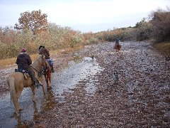 Riding the Galisteo River in autumn, from the Makarios Ranch heading west.  Experienced Horseback Rides all four seasons.