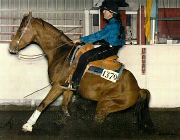 reining on rhett, national reining horse association, NRHA, shawn flarida, half arabian reining