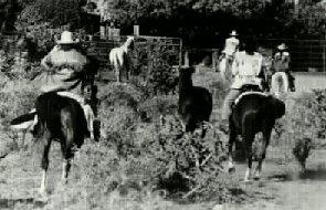 Experienced horseback rides are enjoyed at Markarios ranch!  Horseback riding Santa Fe New Mexico area.
