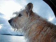 Dorothy in Sitka Alaska, 2000