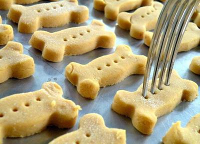 Dog Treats Dog Biscuits