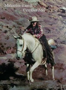 Experienced horseback rides occasionally go as far north as Ghost Ranch, Abiquiu NM, home of Georgia O'Keeffe.